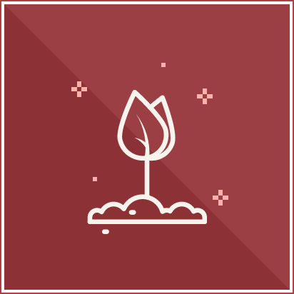 service-icon-5
